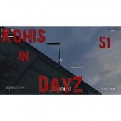 DayZ 51